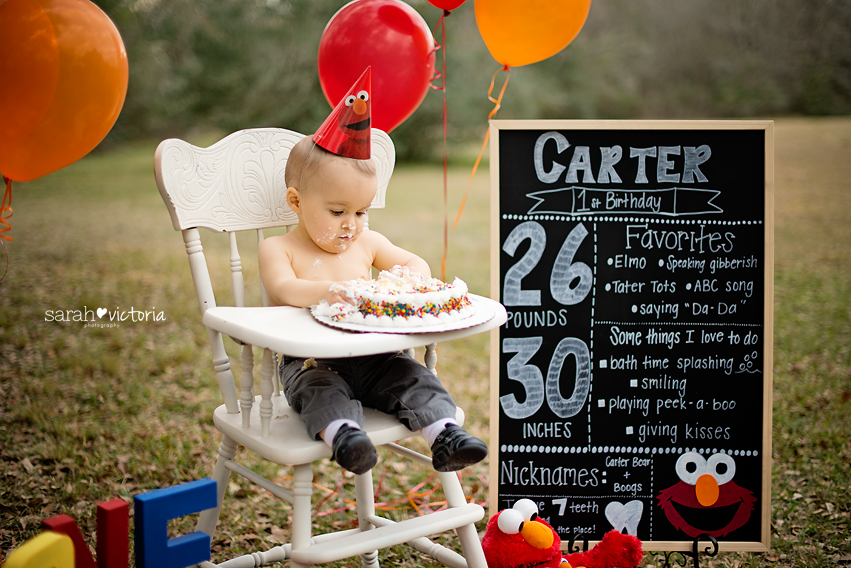 Tagged Birthday Cake Smash Clear Lake Elmo Family Photography First Friendswood Houston Tx League City One Year Old